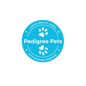 https://prowritings.co.nz/pw-files/uploads/2020/10/Pedigree-Pets.png